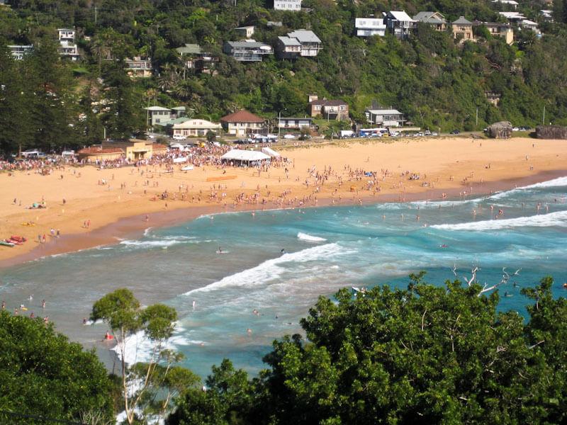 Palm To Whale Beach Ocean Swim