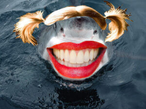 shark with human teeth and a wig